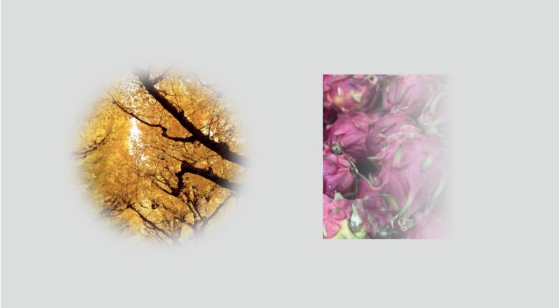 Illustrator_transparency-blending-modes01