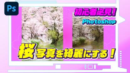 初心者必見!Photoshopで桜写真を綺麗にする!